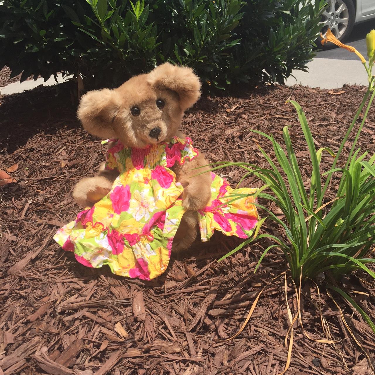 Esther Bear #2